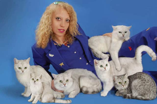 Slightly Crazy Cat Lady