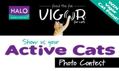 Vigor contest graphic