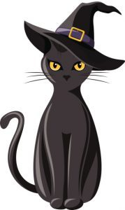 Black cat with witches hat.