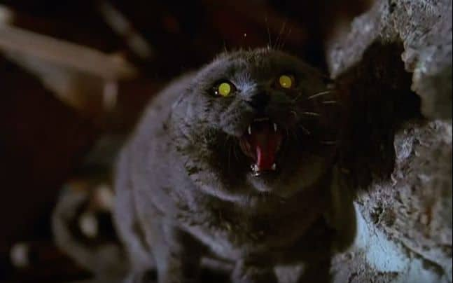 petsematary-screengrab-jpg-653x0_q80_crop-smart