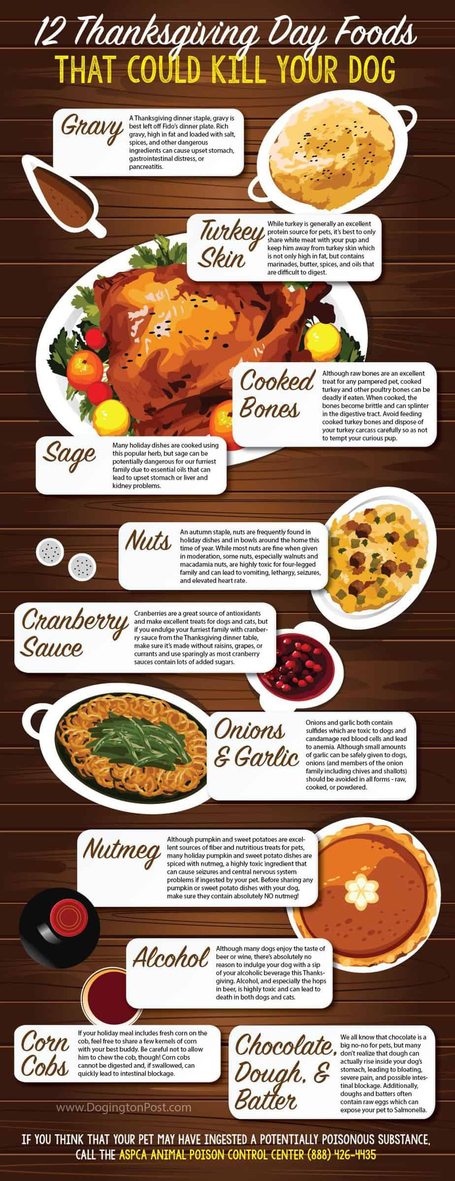 Poisonous Thanksgiving Food For Dogs