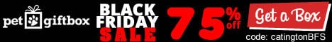 PGB-468X60_BLACKFRIDAY_banner_catington