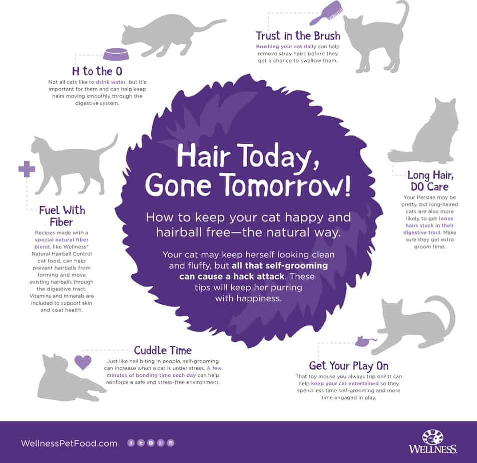 wellness-hairball-infographic-rgb_FINAL