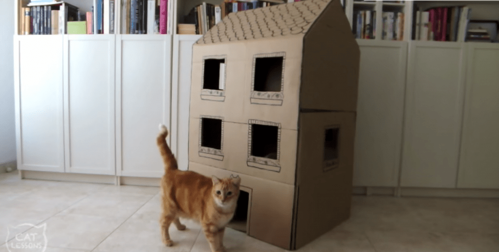 How To Make A Too Cute Two Story Cardboard Cat House The Catington Post