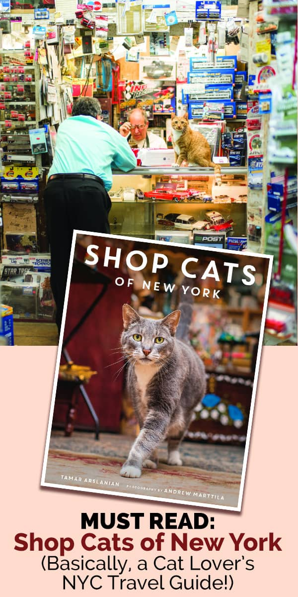 A stunning full-color collection that features New York's iconic felines and the stories behind them. Cultivated by celebrated cat blogger Tamar Arslanian. With photographer Andrew Marttila's astute photos to compliment the felines' tales, this book is a must-have for every cat and Big Apple lover.