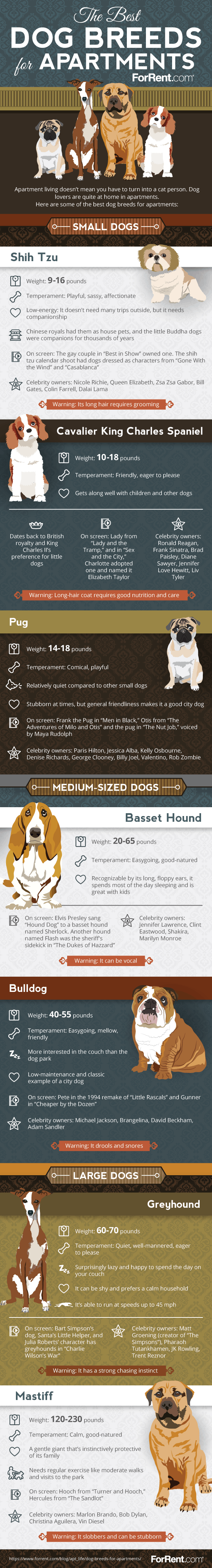 With These Questions In Mind Forrent Compiled This Infographic Showcasing The Best Small Medium And Large Breeds For Apartment Living