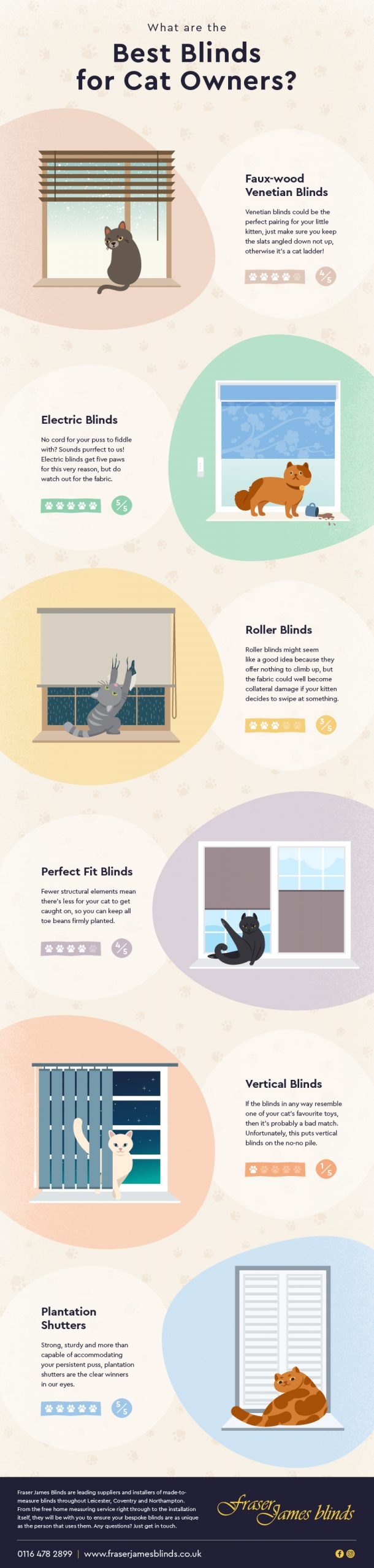 infographic best blinds for cats